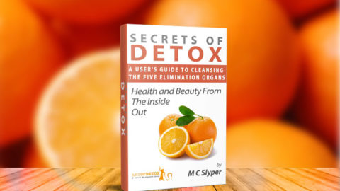FREE SECRETS OF DETOX Cleanse Handbook