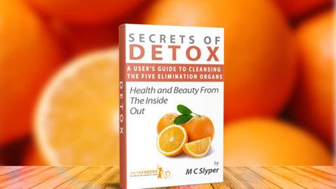 FREE SECRETS OF DETOX Cleanse Handbook