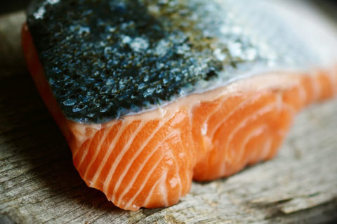 Fish Tapeworms in Salmon