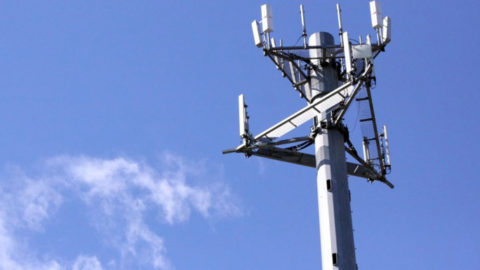 The evidence indicating wireless is carcinogenic has increased and can no longer be ignored