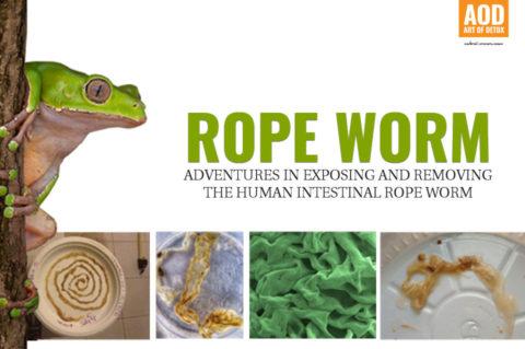 Rope Worm