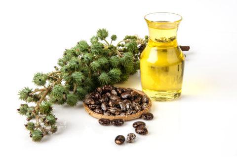 Castor Oil as an Anti-Parasitic
